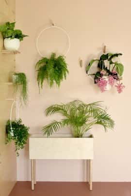 JUNGLE M  Plant stand natural